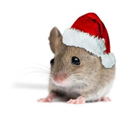 mice at Christmas